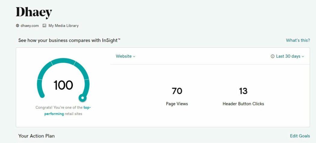 Dhaey insights website builder
