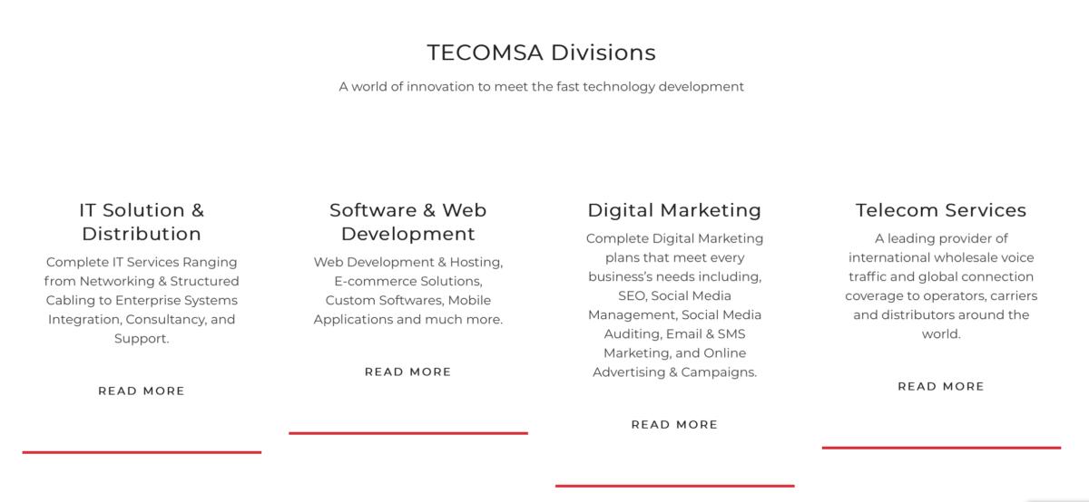 IT solutions tecomsa divisions