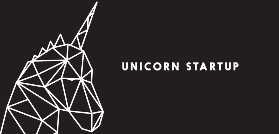 unicorn million dollar business