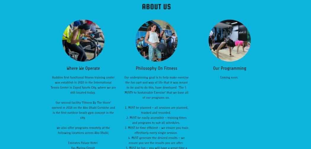business website Haddins homepage